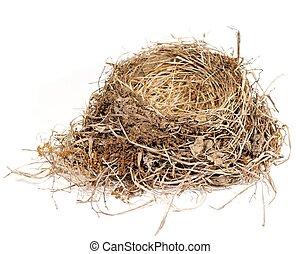 Bird nest made of grass and straw