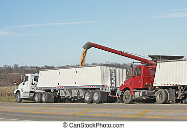 Loading Corn - Combine loading corn into a truck after being...