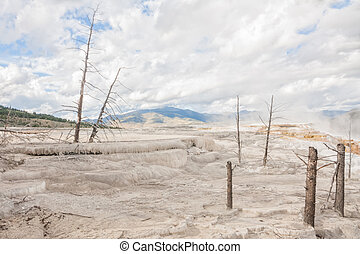 Top of Canary Springs - Landscape of the top of Canary...