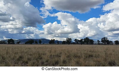 Australian Rural Landscape - This Is a Australian Rural...