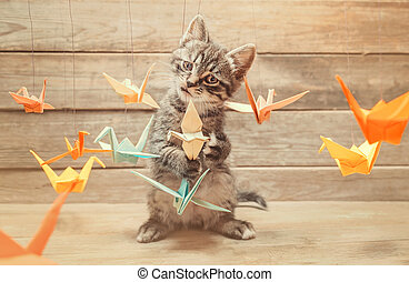 Little kitten playing with colorful origami birds -...