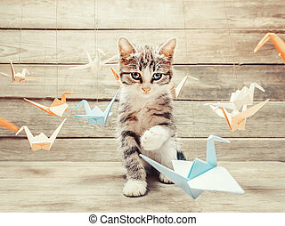 Kitten playing with colorful paper birds cranes - Cute...