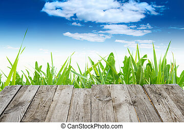 View from wooden table to green spring background