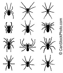 spiders - Black silhouettes of different spiders, vector