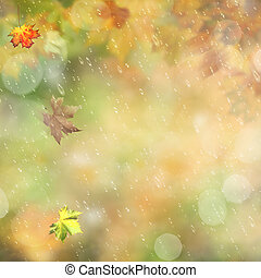 抽象的, 背景, 秋, 雨, 環境, 森林