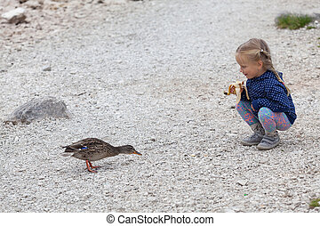 little girl feeding ducks at Black Lake in Durmitor National Park