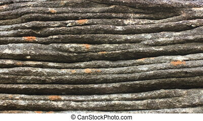 Geology - Sedimentary Bedding Structures - Geology these...