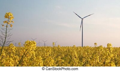 wind turbine - behind rape field - - elements of the...