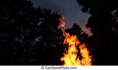 Campfire - high flames - with sky