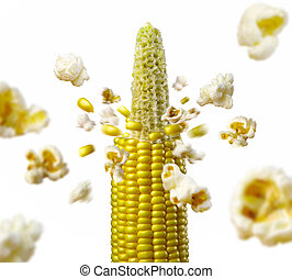 corncob explodes and produces popcorn healthy vegetarian...