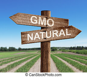 GMO and natural road sign with pea field as a background -...