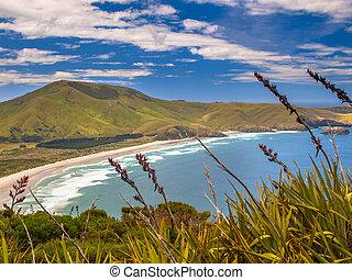 Coastal view Otago - Coastal view of Wickliffe bay Pacific...