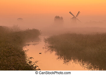 Polder landscape with historic windmill - Polder landscape...