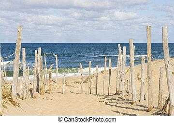 Beach at Cape cod - Sandy beach and ocean at Cape Cod