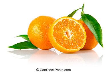 Świeży, mandarynka, owoce, zielony, liście, odizolowany