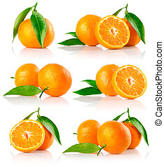 set of fresh mandarine fruits with cut and green leaves
