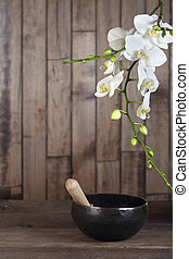 White orchid - Flowers white orchid on a dark wooden...