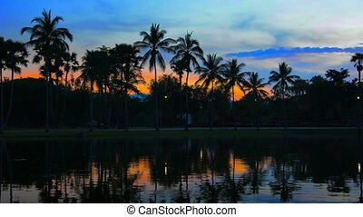 Sunset behind Palm Trees by Pond in Thailand