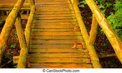Suspended Wooden Walkway over Junge Floor in Thailand -...