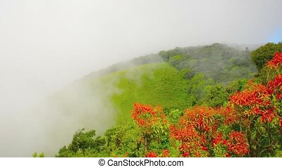 Misty Mountains over Chiang Mai, Thailand - Video 1080p -...