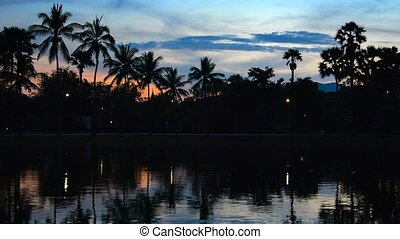 Palm Trees Silhouetted Against Early Evening Sky - 1920x1080...