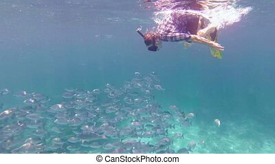 Tourist Swims With a School of Fish off Thailand's Similan Islands