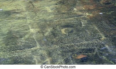 Religious symbols carved on stone at the bottom of the river...