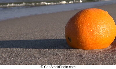 A sunlit orange by the sea - orange fruit in the sand by the...