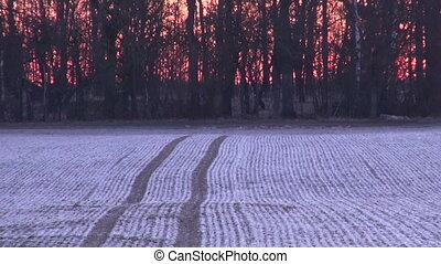Frosty winter agriculture  field