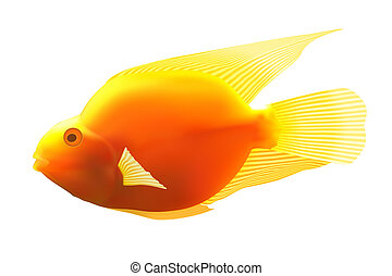 Yellow fish illustration image Isolated on white