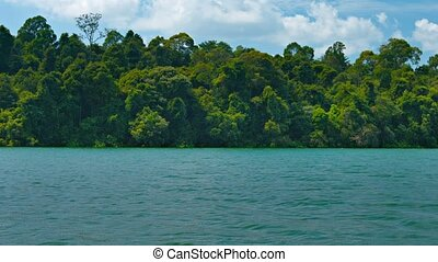 Drifting Lazily on a Broad River - Forested bank of a broad...