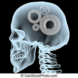 X-ray of a head with the gears instead of the brain, 3d...