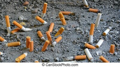 Dozens of extinguished cigarette butts of varying brands,...