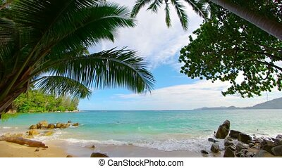 Beautiful, blue water of a tropical sea, sandy beach beneath...