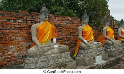 Row of Buddha Statues, Draped in Yellow at Wat Yai Chai...