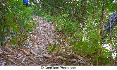 Tourist trekking along a nature trail on Phuket Island in...