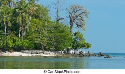 Deserted, Rocky, Natural, Tropical Beach with Natural Trees...