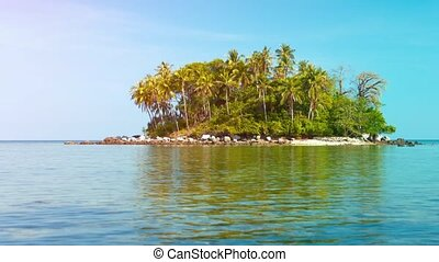 Pretty Tropical Island with Palm Trees and a Rocky Beach -...
