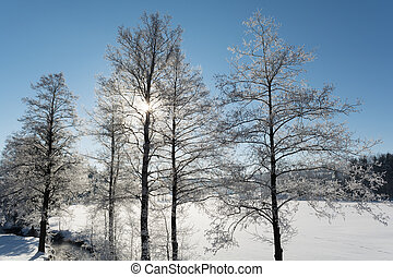 Winter landscape with sunshine - idyllic winter landscape on...