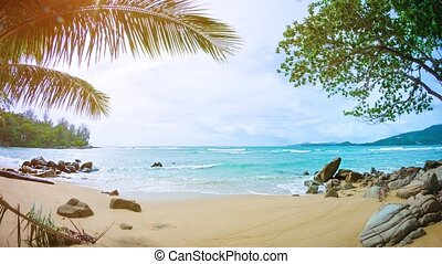 Palm Leaves Waving in a Breeze on a Tropical Beach - FullHD...