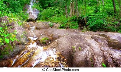 Water Tumbling down a Natural Waterfall in the Jungle -...