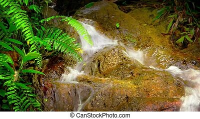 Beautiful Natural Waterfall in Tropical Paradise, with Sound...