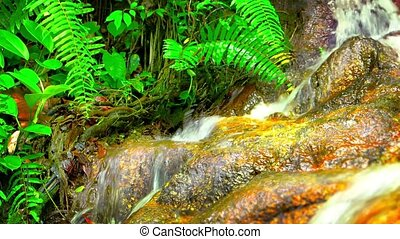 Natural Waterfall in the Jungle with Sound - Video FullHD -...