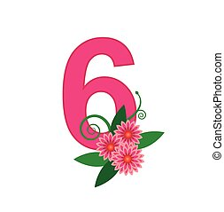 Number six with floral vector