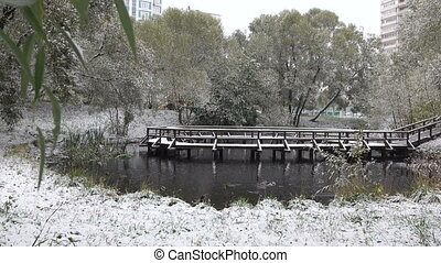 Trees covered with snow around the lake - Trees and bridge...