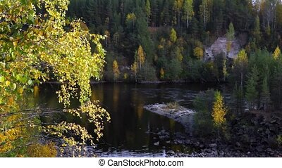 River in taiga in autumn - Suna river in wild taiga forest...