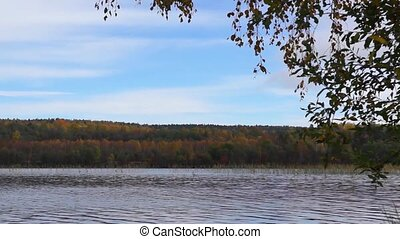 Wild forest lake panorama in autumn
