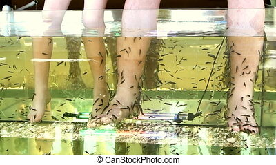 Peeling skin feet of tropical fish in the water - Peeling...