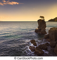 Portofino park. Pine tree rock cliff on sunset. Ligury,...