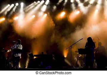 Luis Represas concert - View of Luis Represas musician...